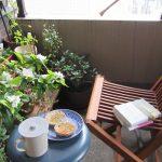 七十二候は「乃東枯」に。いまだ見たことない夏枯草=靭草が咲く頃と暦。靭草どころか季節の花々草々と出会えずじまいで、今日もベランダカフェに居る。/旧暦5/2・丙申