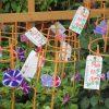 あぁあぁ~(-_-;)、東京下町の夏の風物「朝顔市」も中止かぁ。しかたないので、昨年の写真眺めて良しとします←コレばっか。/旧暦5/16・庚戌