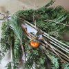 江戸東京は、松納め。今日は、ご近所・諏方神社のどんど焼きにて、神様の依り代だった松(檜も😊)送ります。/旧暦11/26・丁巳