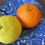 今日は春彼岸明け。「春柑橘」が、ますます美味に感じるうららかな日々到来。ってことで今年の国産「春柑橘」第2弾🍊🍊/旧暦2/11・庚午