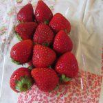 東北では、苺はまだ花の頃なんだなぁ…と写真眺めてるうち、食べたくなった。買ってきました今年の初物いちご🍓/旧暦3/26・乙卯