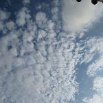 七十二候は「蒙霧升降」に。暦には「霧」という秋の季語が登場。暑さぶり返した東京も、空には秋の気配です(*'▽')/旧暦7/11・戊戌